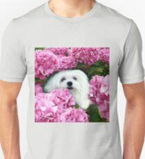 Snowdrop the Maltese - Cheeky Face ! T-Shirt