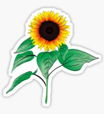 Sunflower Plant  Sticker