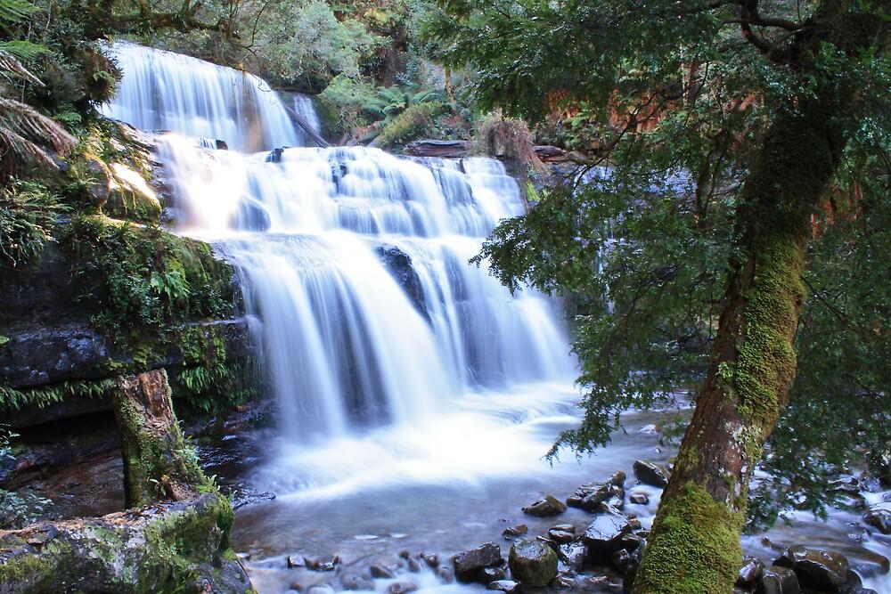 Liffey Falls by Astral