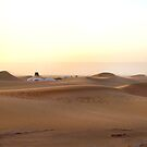Sahara desert  by cs-cookie
