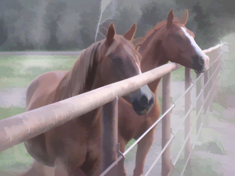 Horses at the Fence by Chet Scerra