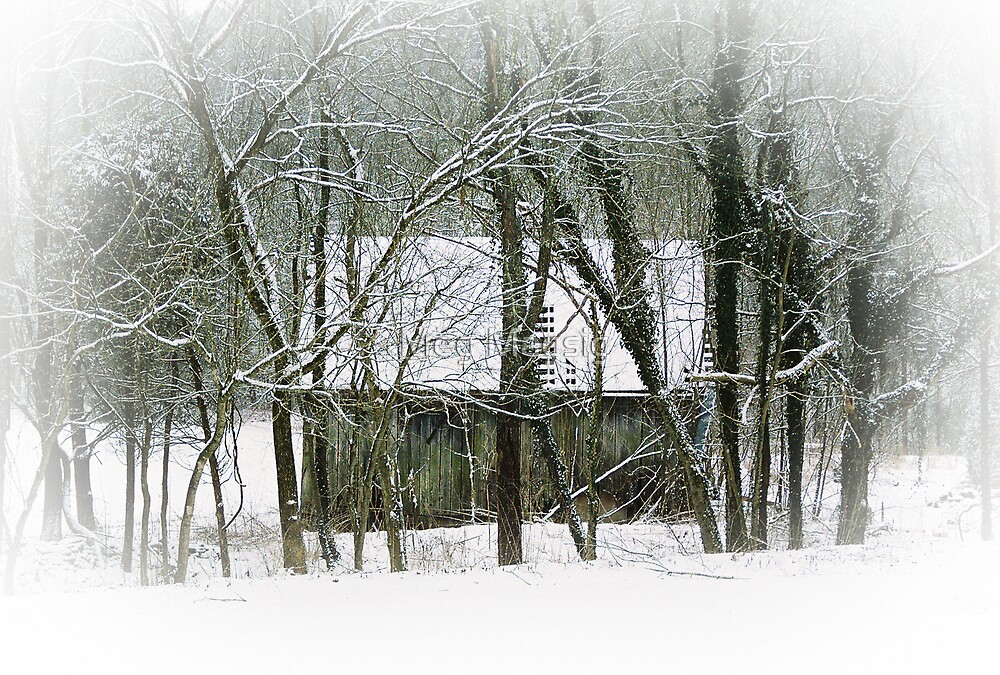 The Shack by Meg Magsig