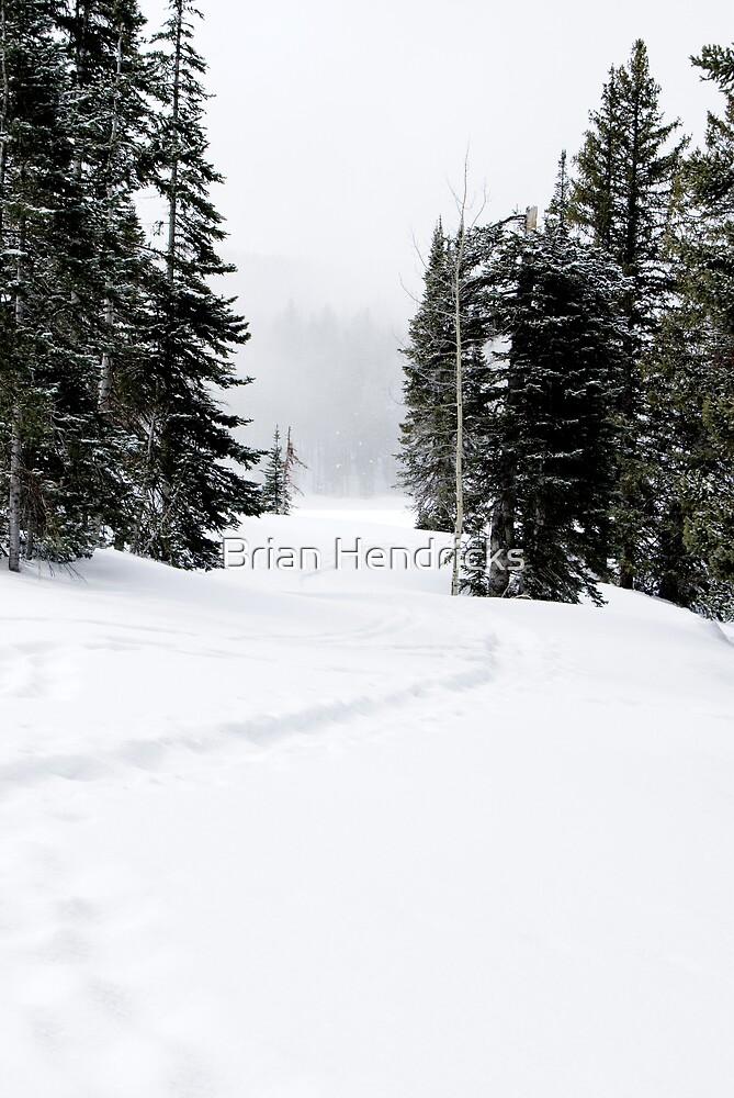 Snowshoe Trail by Brian Hendricks