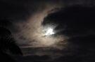 Night Soaring by Kerryn Madsen-Pietsch