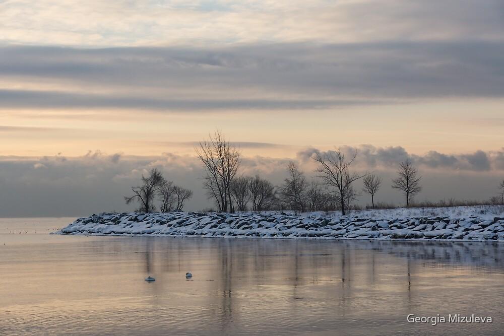 Two Swans, Sleeping - Serene Winter Lake Scene by Georgia Mizuleva