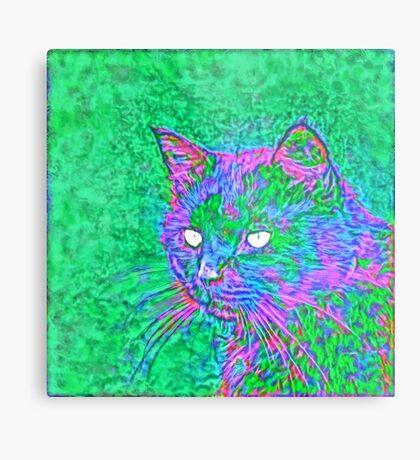 Ninja Cat, Predator Metal Print