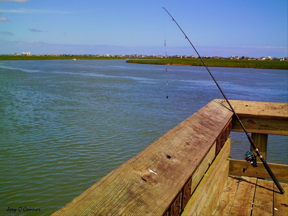 Fishing Rod Over-Looking The Inlet by Joey O'Connor