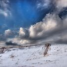 Snow Drifts by Chet Scerra