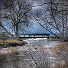 Lake Ontario Creek by Chet Scerra