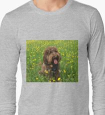 Cockapoo sitting in Summer Buttercup Flowers T-Shirt
