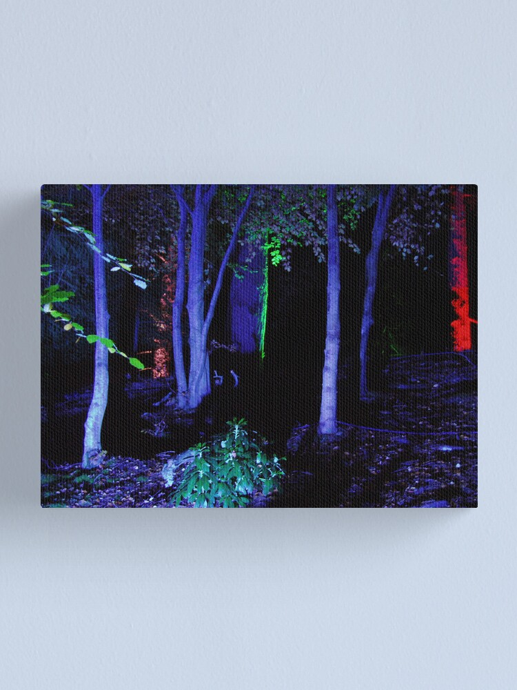 Alternate view of The Enchanted Forest Canvas Print