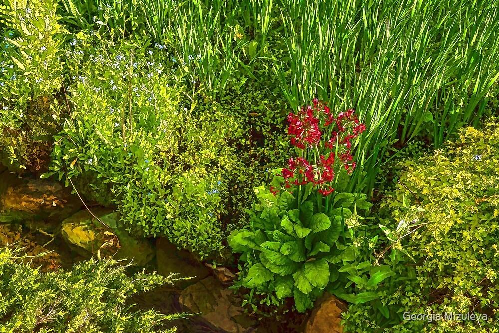 Impressions of Gardens - a Miniature Spring Creek with a Red Primrose  by Georgia Mizuleva