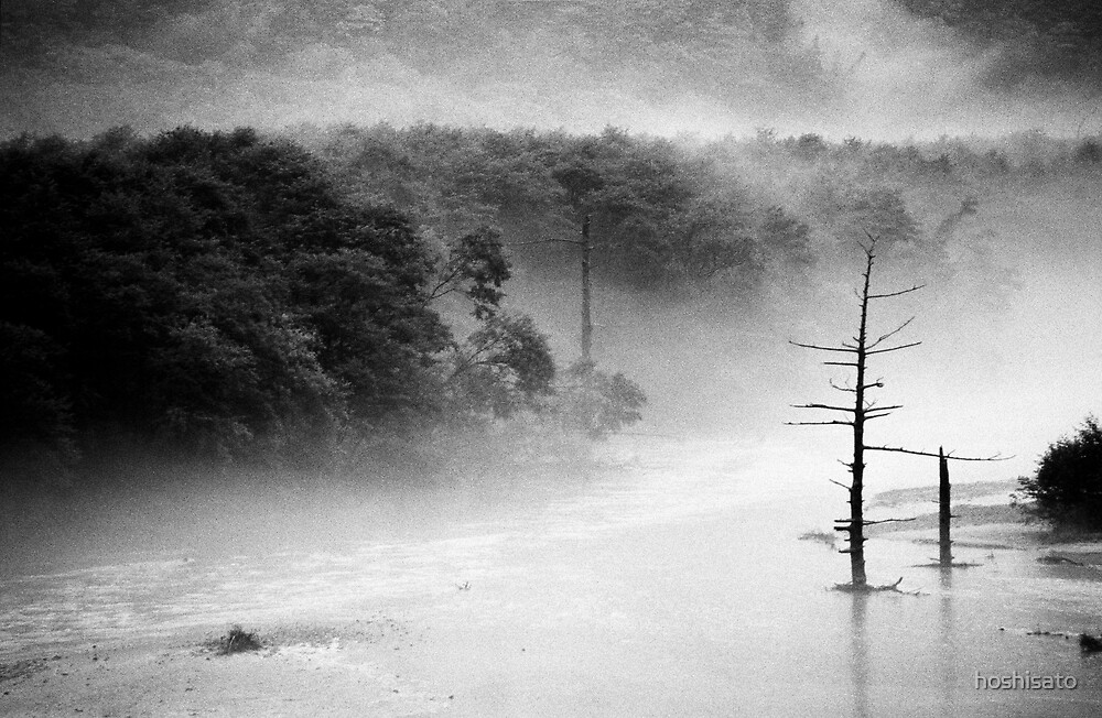 Taishoike pond after the typhoon, Japan by hoshisato