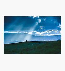 Heaven Selected Tree  Photographic Print