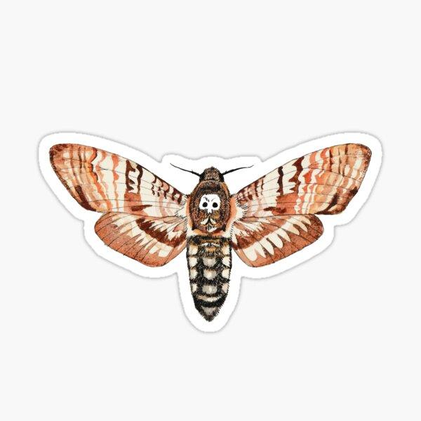 Death's-head hawk moth  Sticker