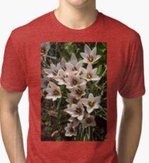 A Bouquet of Miniature Tulips Celebrating the Spring Season - Vertical Tri-blend T-Shirt