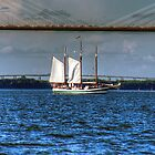 Sailboat in the Charleston Harbour. by TJ Baccari Photography