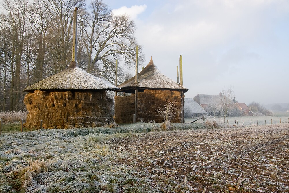 Dutch winter landscape by hoshisato