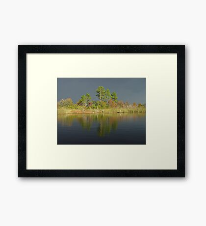 The Five Pines before the Storm Framed Print