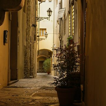 Wandering Around the Lanes and Alleys of Florence, Italy by GeorgiaM