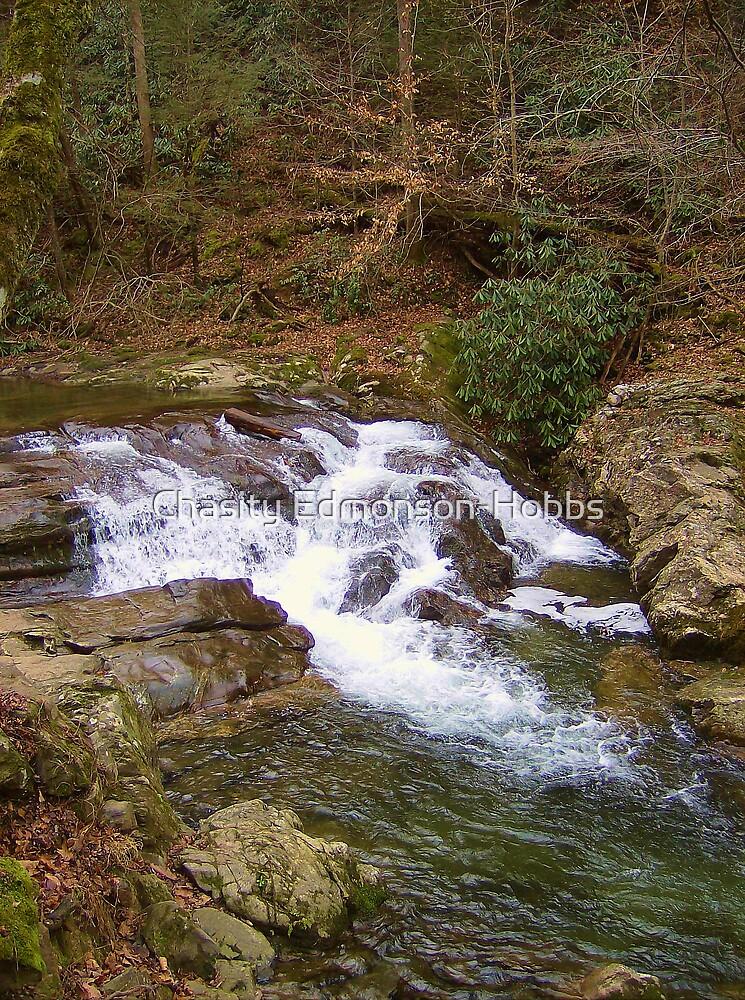 Water Fall by Chasity Edmonson-Hobbs