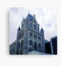 Museum Of Natural History Canvas Print