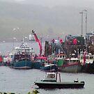 Portree Harbour, Skye by Tom Gomez