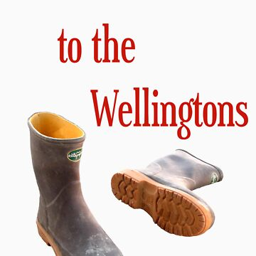 bollocks to the wellingtons by benjy