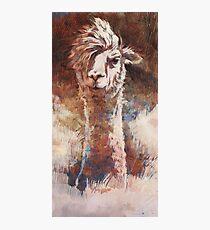 Artsy Llama Fotodruck