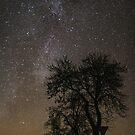 Clear Sky by Dominika Aniola