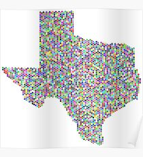 Texas flag-colorful Poster
