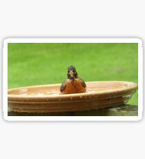 Birdbath - Robin Sticker