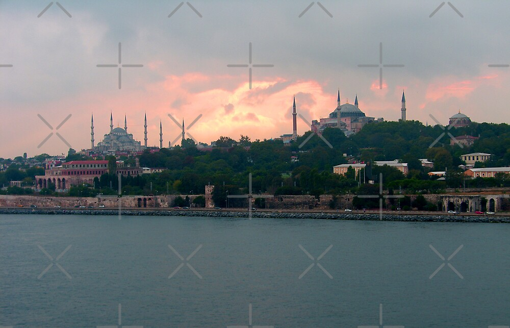 Istanbul Skyline at dusk by Tom Gomez