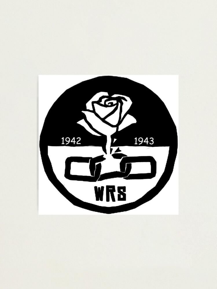 Weiße Rose Gesellschaft Fotodruck von themielkman