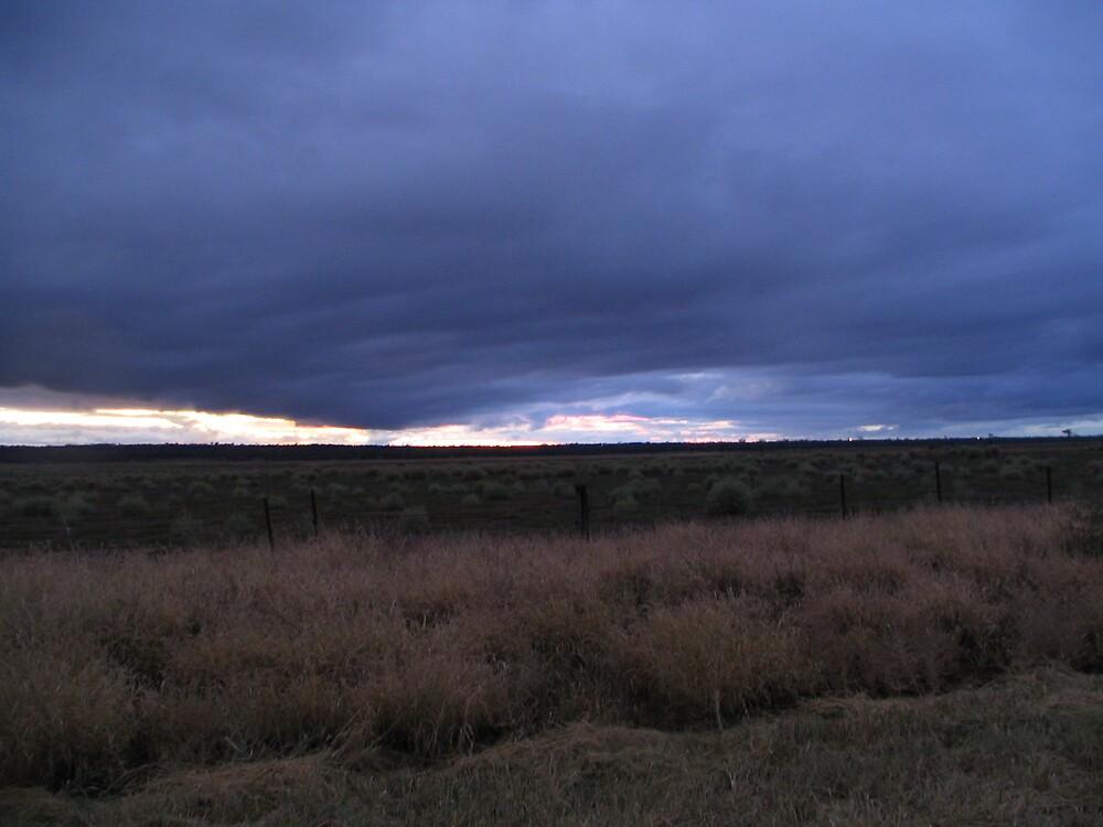 Storm brewing by Sue Wickes