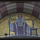 The Saint by Rowan  Lewgalon