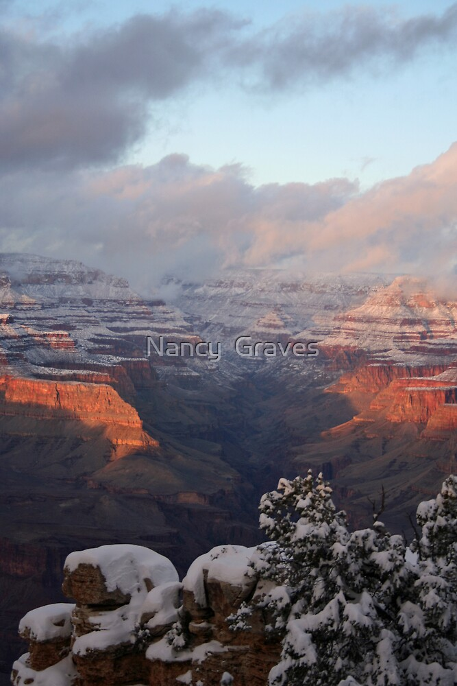 frosted canyon 2 by Nancy  Graves
