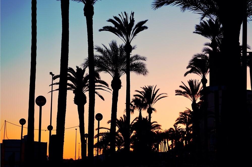 Barcelona Sunset by Maddy Pothier