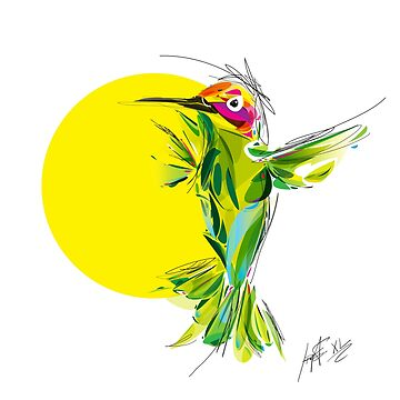 Hummingbird by santanafirpo