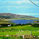 Tranquil Scene, Donegal, Ireland by Shulie1