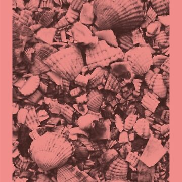 Shell 00.3 by BradMeadDesign