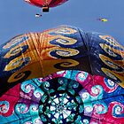 The Joy Of Hot Air Ballooning 4 by Alex Preiss