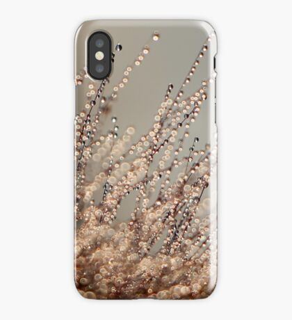 Champagne iPhone Case/Skin
