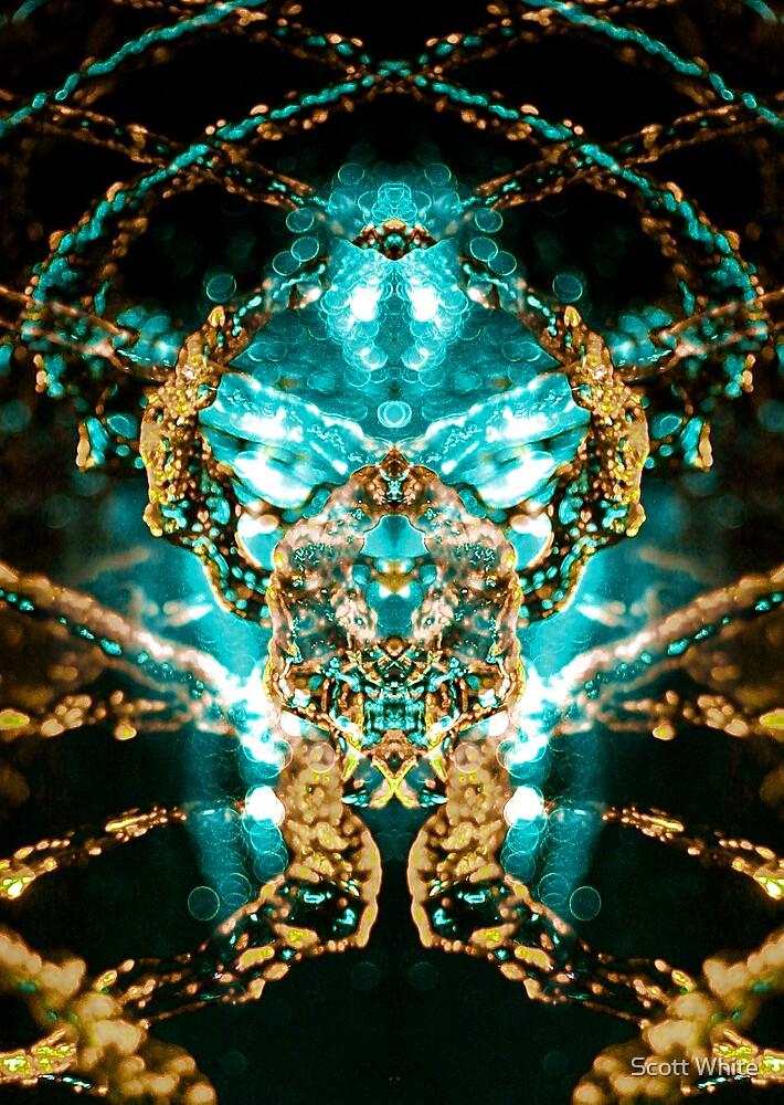 Plasm by Scott White