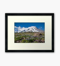 Mt Hood and lupines from Pacific Crest Trail painterly Framed Print