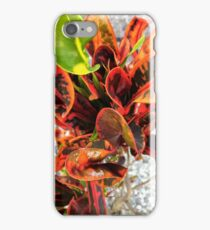 Fire Plant iPhone Case/Skin
