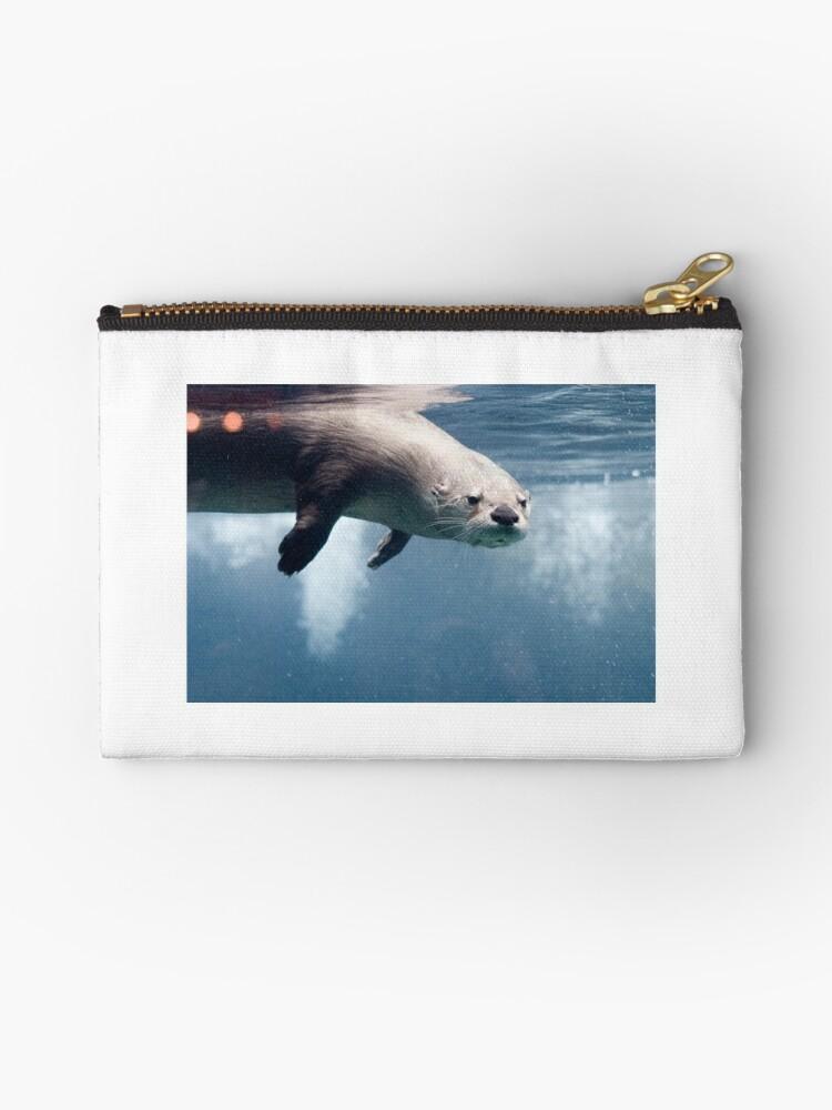 Otter Underwater by shanndixon
