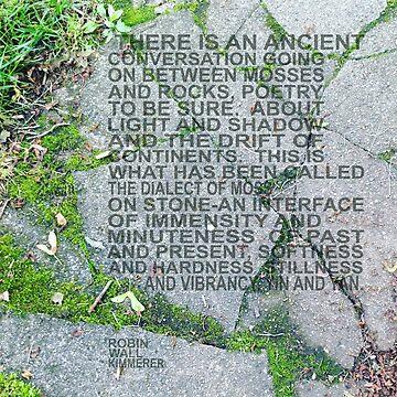 Ancient Conversation by jegustavsen