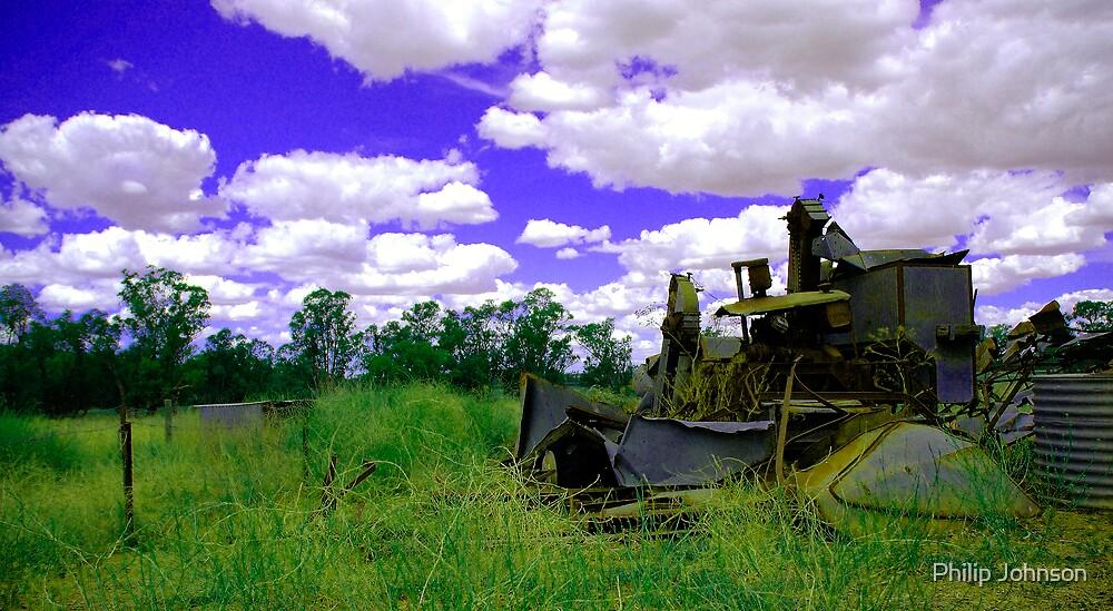 Fantasy, Rural NSW, Australia by Philip Johnson