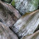 Palm pattern by agnessa38